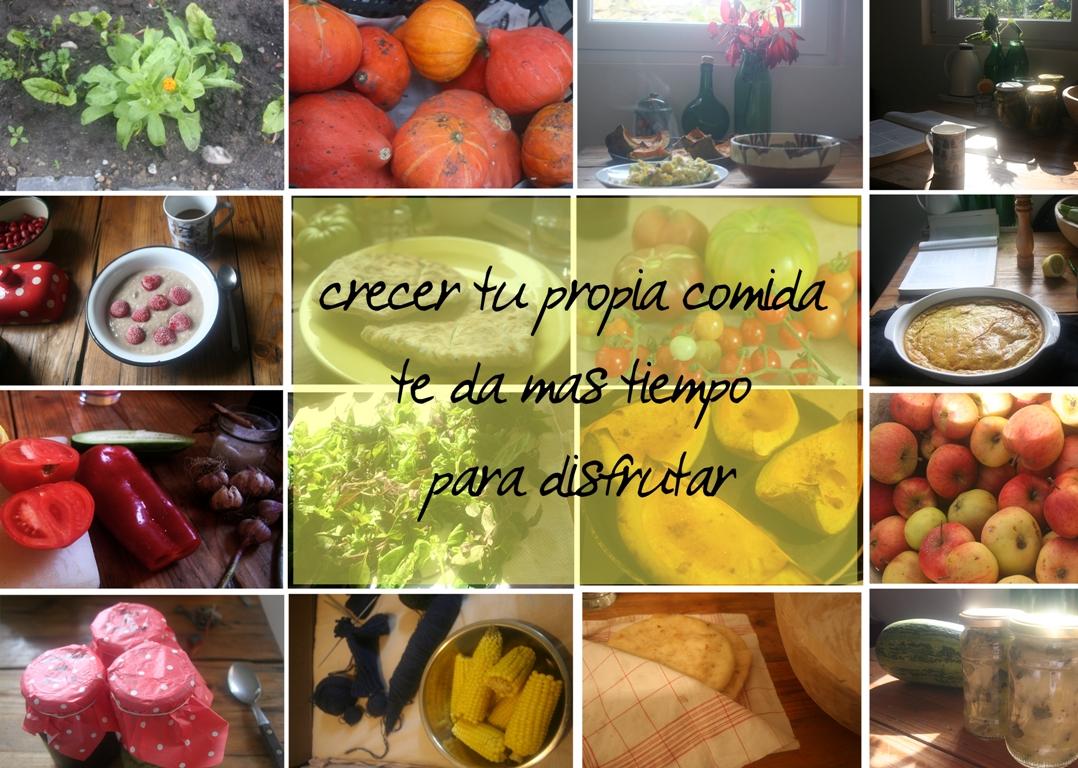 crecer tu propia comida te da mas tiempo para disfrutar